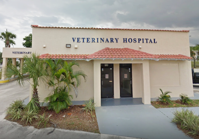 Veterinarian in Fort Pierce, FL